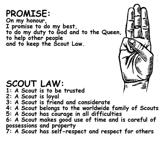 About Our Scouts